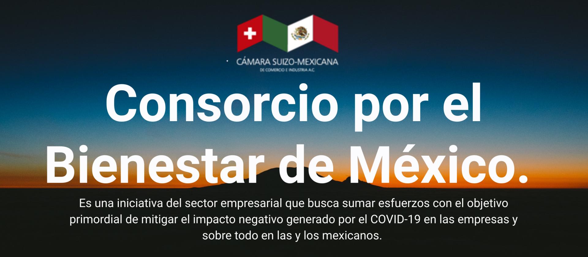 Consorcio por el Bienestar México