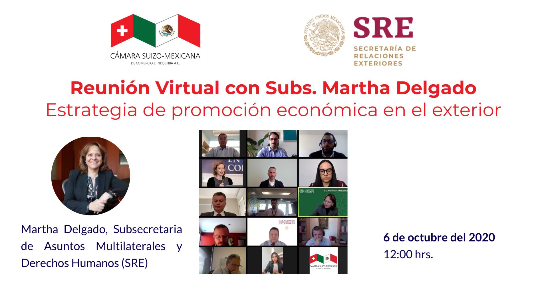 Reunión virtual con Subs. Martha Delgado (SRE)